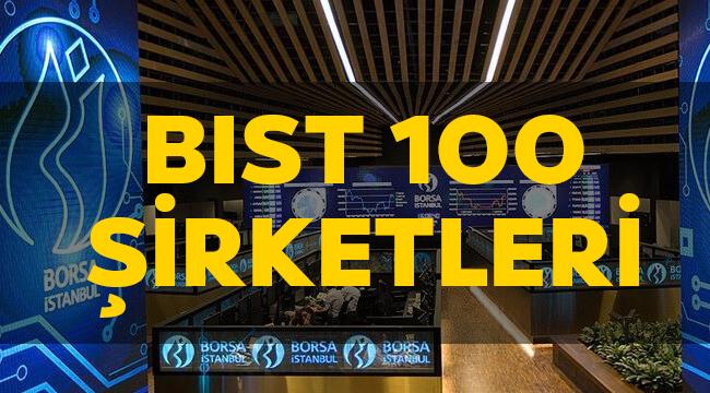 bist 100 şirketleri